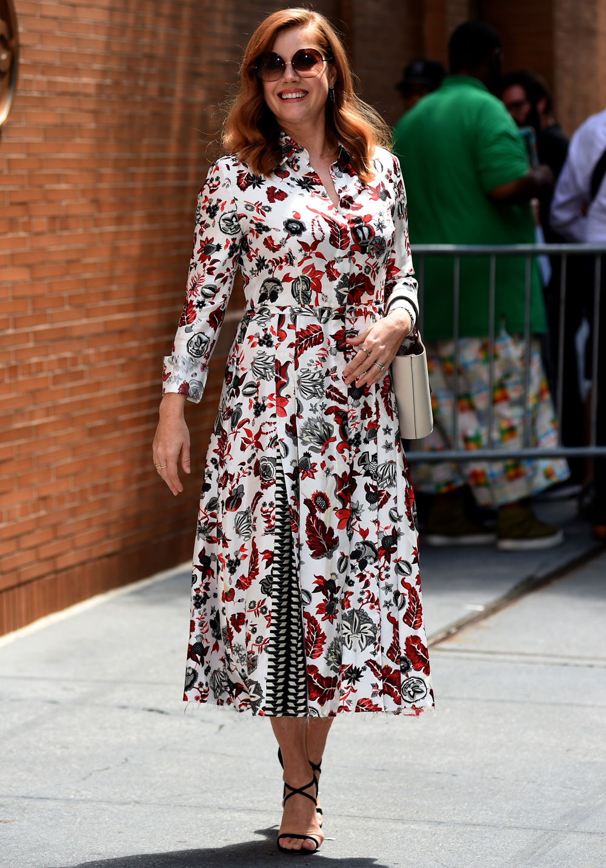 Amy Adams In A Gabriela Hearst Dress And Jimmy Choo Shoes