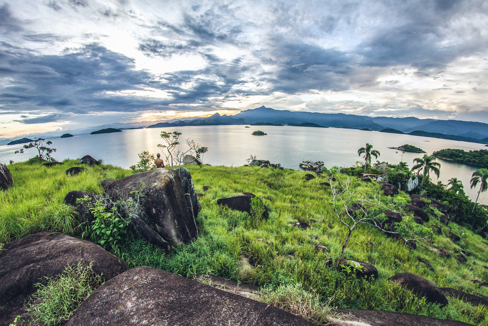 The World S Most Remarkable Rainforests About Her